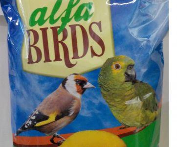 alfabirds